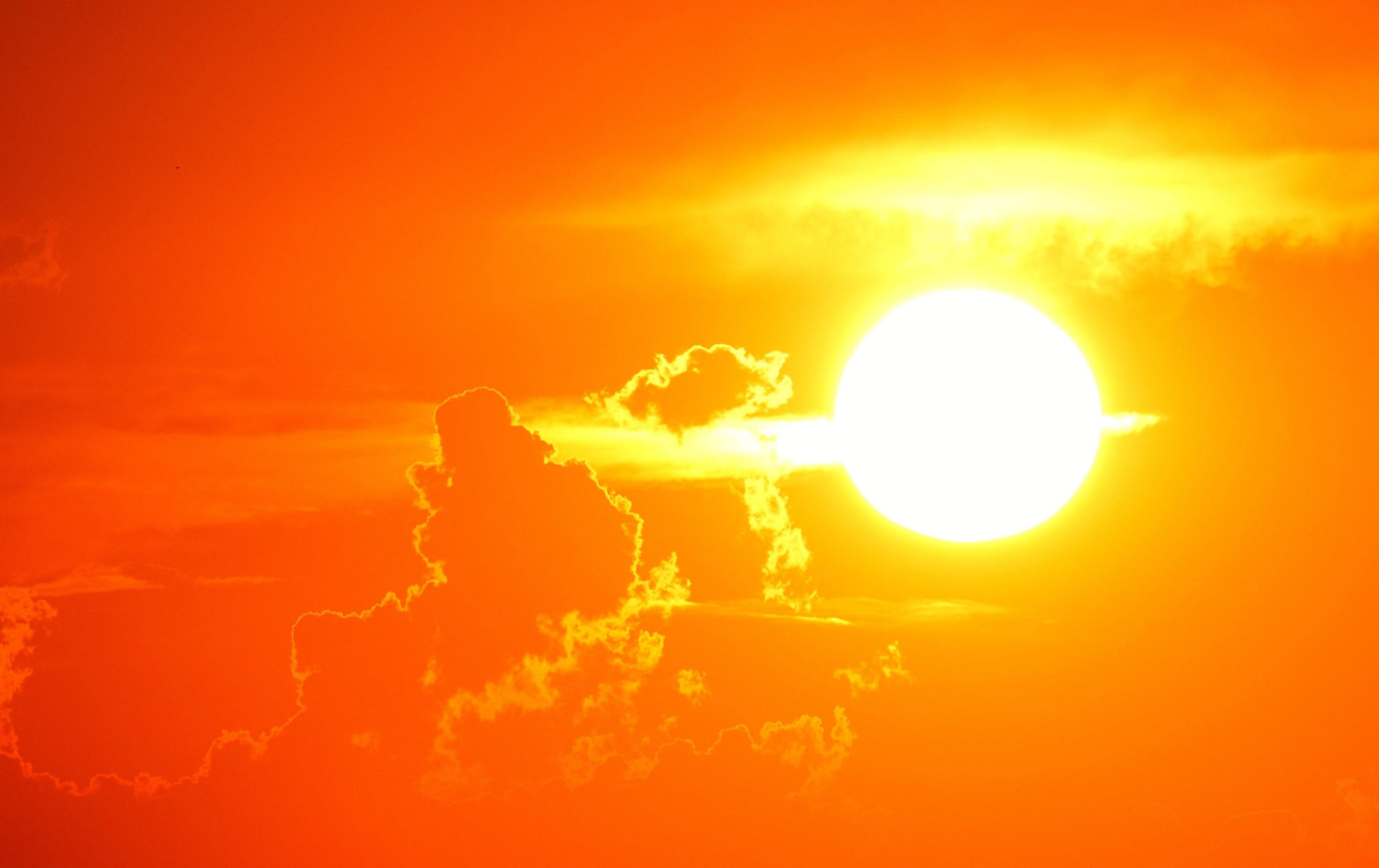 Focal Sun